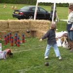 2009 Walkern Fair skittles