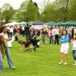 2008 Walkern Fair 039