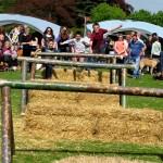 2014 05 04 Walkern Fair John Pearson 095